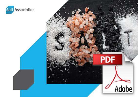 Download: Salt Strategy PDF