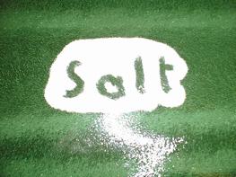 salt-green